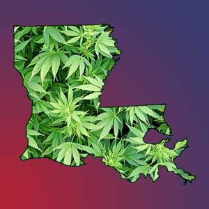 louisiana-marijuana